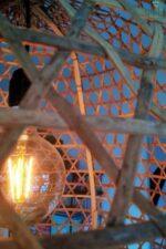 Oriental Hen Korblampe Diq L kaufen